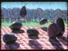 flying-eggplant_30x40_1982180